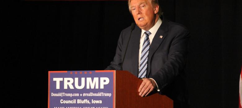 Donald Trump by Matt Johnson (CC BY 2.0) https://flic.kr/p/CwCd3P